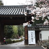 京都 随心院・はねず踊り   2020年3月29(日)