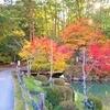 白川郷と飛騨高山観光。紅葉と美味しい食事とお土産。