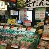 『越後湯沢駅』が楽しすぎる🌟ここでは最低一時間は時間を確保がオススメ🌟観光気分で見てね〜🌟