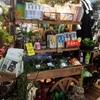 《アーティスB1階》夏にピッタリのお勧め商品@お花屋さんの為の資材コーナー