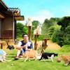 4月8日公開。ひたすら猫が出てくる。スマートフォン向けゲームアプリを映画にした「ねこあつめの家」の予告映像を公開。