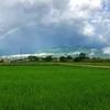 安曇野、梅雨の朝の大きな虹。