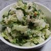 白菜を使った料理何かある?白菜のコールスロー風サラダ!