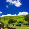 青空、草原、鹿