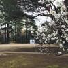 東京都庭園美術館のお庭散策