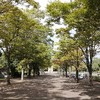 【散歩】午前中の上府中公園~大きなサギが池の岸辺に佇んでいました!