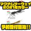 【レイドジャパン】多彩に使用出来るワーム「マグナムツーウェイ2021年カラー」通販予約受付開始!