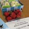 マインドブロックバスター®養成講座in札幌♪楽しい時間でした