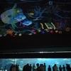 夏休みお出かけ第3弾 評価の高い須磨海浜水族館に行ってきました!