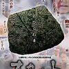 【映画】 白石晃士監督作品 オカルト