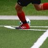 我々一般のサッカーファンはワールドカップをどう迎えればいいのか