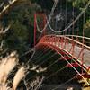 今年最後の府県境越え? ~ 和歌山県橋本市「杉村公園」Ⅳ