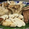 肴ならではの天然きのこ料理 【秋限定!究極のすき焼き】