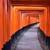 フォトジェニックな千本鳥居で人気の伏見稲荷の魅力を紹介(Kyoto,fushimi inari taisha)