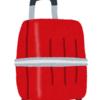 コストコにてサムソナイトのスーツケースを衝動買い! でも残念、SPGアメックス使えず。。。