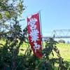 稲田堤にある天国「たぬきや」にお別れをしてきた。
