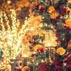 水曜からはじまるリジューのクリスマスセール