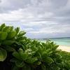 石垣島からの波照間島日帰りツアーの内容