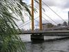 新大橋のほとり