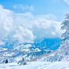 絶景の湯沢高原雪遊びと湯沢温泉