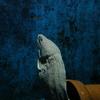 水族館その③ 〜その他の生き物