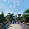 子連れシンガポール旅 -マリーナ地区の観光-