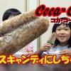 <UP>コカ・コーラをアイスキャンディーにしちゃおう!【ひなはづチャンネル】