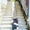 【神奈川】喫茶ノバナ*猫のいる家庭的な雰囲気のお店