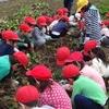 学校大爆笑!おもしろ笑楽校!学校ファーム探検!学校で野菜作り!