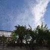 近畿地方 今日梅雨明け