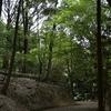 久々に奈良へ 若草山から春日山原始林北側を歩く