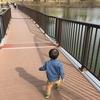 【新型コロナウイルス流行中】何して遊ぶ?今こそお散歩!【1歳3歳育児】