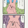 スキウサギ「スプリング」
