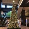 クリスマス 大きなクリスマスツリー