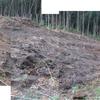 浸透トレンチ 雨水放流は下方林地へ