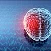 【ガチ】人間は地震予知能力を持っていることが科学で判明! 磁気を受信する第6感の存在が確認される!