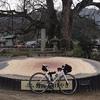 自転車の走り初めは CARRERA NITLO SL でいつもの妙見山(笑)