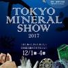 12月2週目 石のコミケ。東京ミネラルショーに行ってきました!