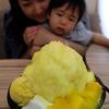 1歳児と行く台北(台湾)-子どもと楽しむお食事① マンゴーかき氷