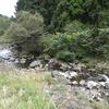 水と緑の杜公園はわんこOK!(静岡県駿東郡長泉町)