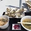 春の松島を満喫してきました
