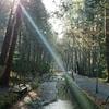 パワースポット巡り(691)(692)森の石松の墓(大洞院)、天宮神社【2020一月 天竜浜名湖沿線を巡る旅 第二日目】