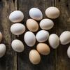 6月21日★読者さんからのご相談「卵を1ダース買ったけれど、何を作れば良いのでしょう」卵料理は無限にある!?★