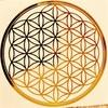 【神聖幾何学フラワーオブライフ(生命の花)の秘密★アダムカドモンにかえる】