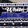 NEWS LIVE TOUR 2015 WhiteでNEWSに落ちた