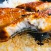 【資さんうどん】絶対おすすめ1080円!期間限定の「うな丼」を食べた感想。うなぎを食べると精がつく理由も解説!