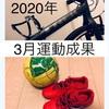 記録 2020年3月運動成果