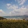 「安藤忠雄建築ツアーができる」淡路島に行ってきました!