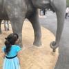 人気のイケメンゴリラがいる『東山動植物園』へ行ってきました。