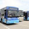 日本援助のブルーカラーの都バスに会って来ました。